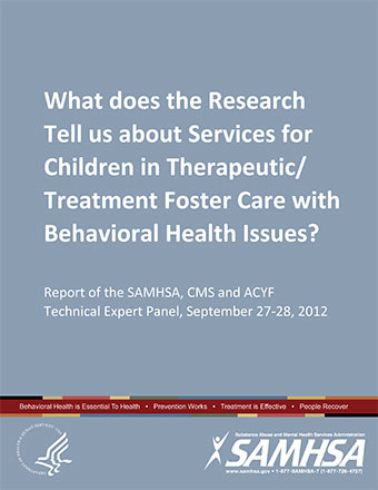 What does the Research Tell us about Services for Children